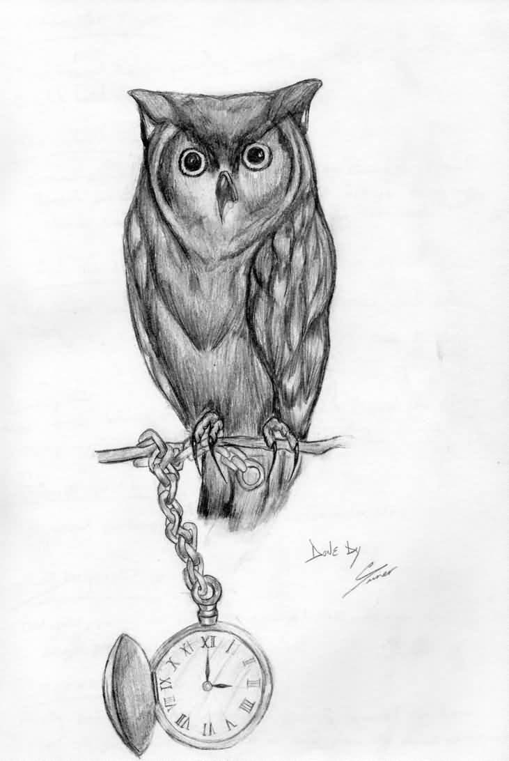 Grey Owl And Pocket Watch Tattoos Sketch