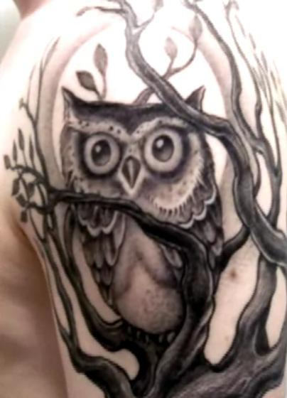 Grey Owl And Tree Tattoos On Sleeve