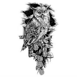 Grey Owl On Branch Tattoo Design