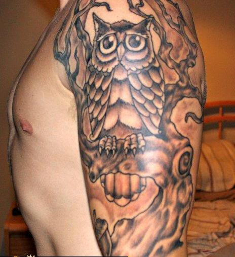 Grey Owl On Tree Tattoo On Half Sleeve