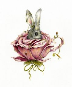 Grey Rabbit In Rose Tattoo Model