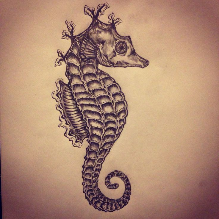 Grey Seahorse Tattoo Flash