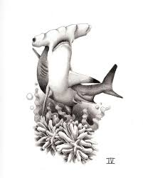 Hammerhead Shark Tattoo Design