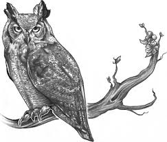 Horned Owl On Branch Tattoo Design
