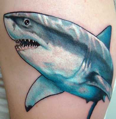 Impressive Blue-White Shark Tattoo