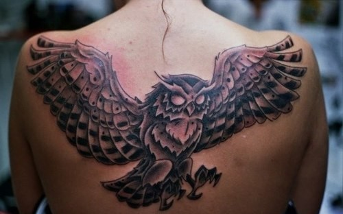 Impressive Grey Flying Owl Tattoo On Upperback