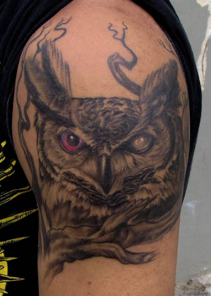 Incredible Grey Owl Tattoo On Biceps