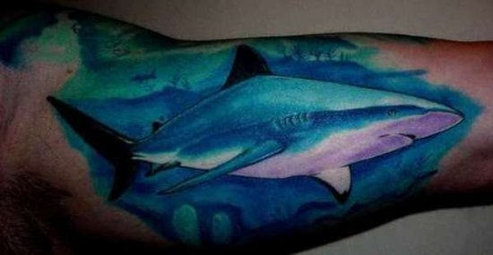 Inside Arm Blue Shark Tattoo