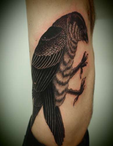 Large Crow Tattoo On Rib Side