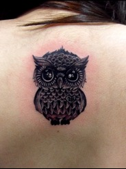 Little Grey Owl Tattoo On Upperback