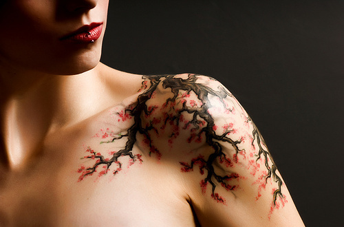 Lovely Cherry Blossoms Tattoos On Left Collarbone