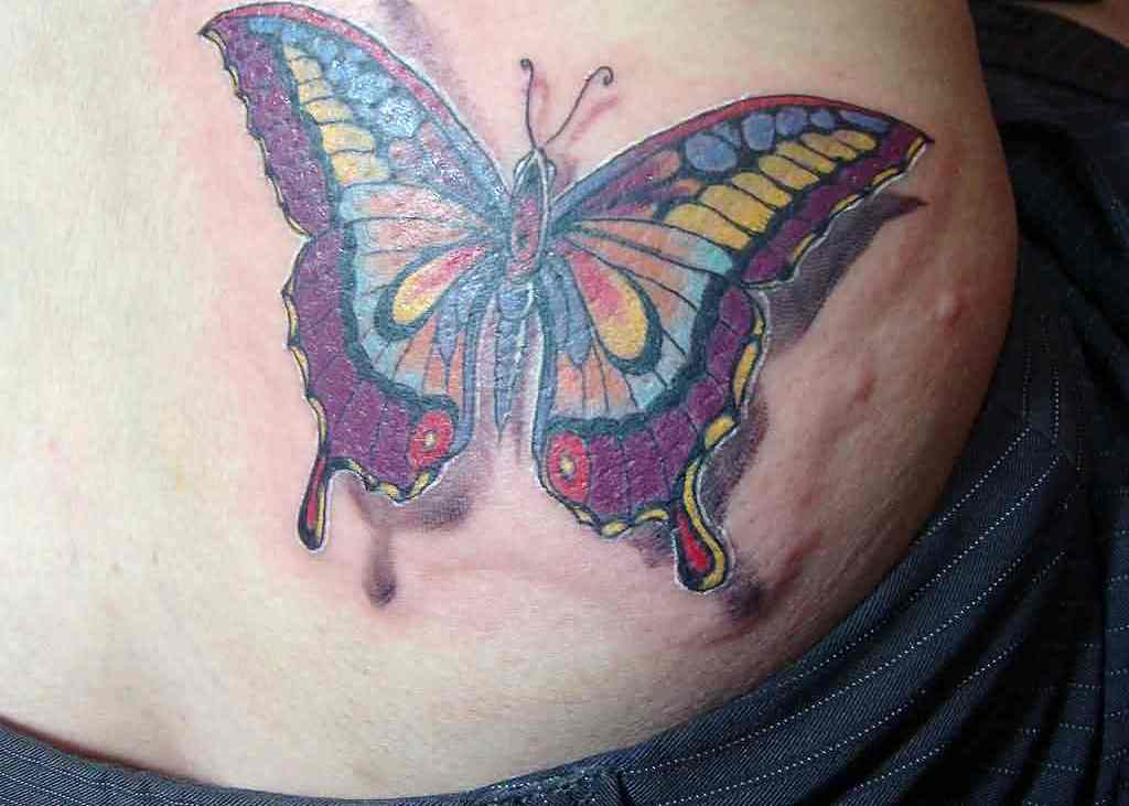 Multi Color 3D Butterfly Tattoo On Waist