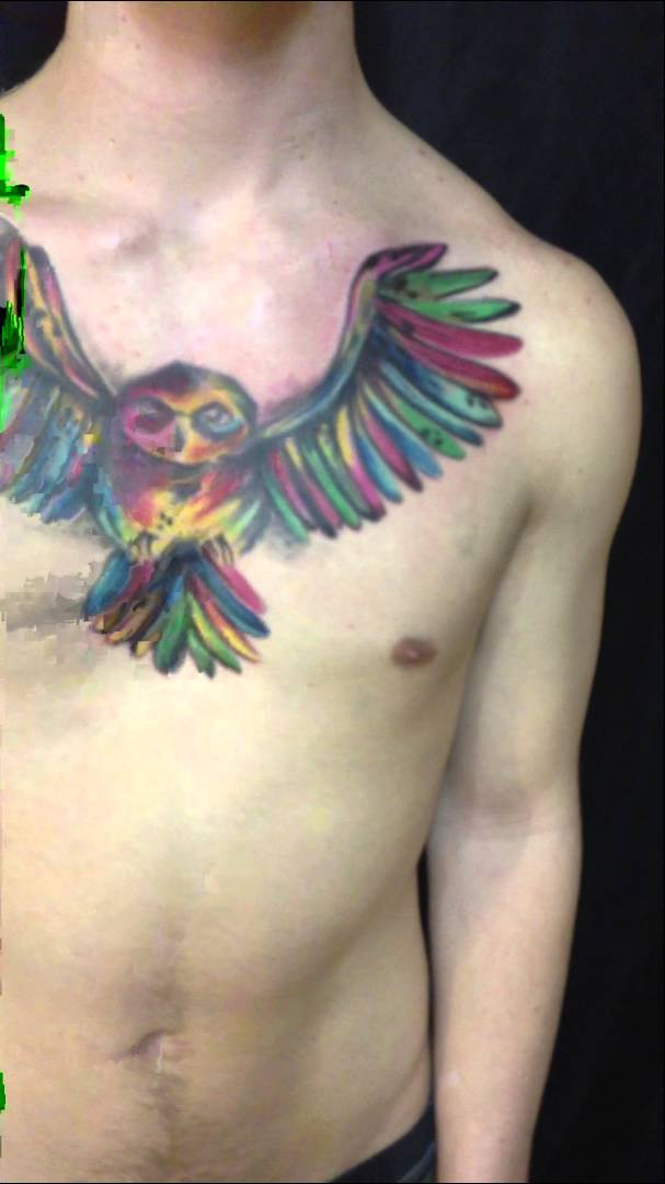 Multi Color Owl Tattoo On Chest