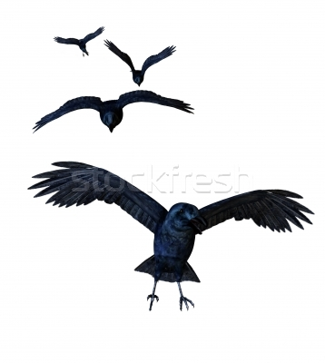 New Crows Flying Tattoo Designs