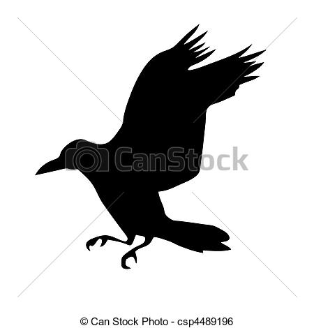 New Flying Crow Tattoo Photo