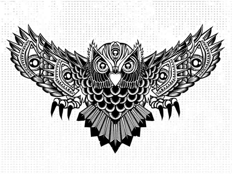 New Owl Open Wings Tattoo Design