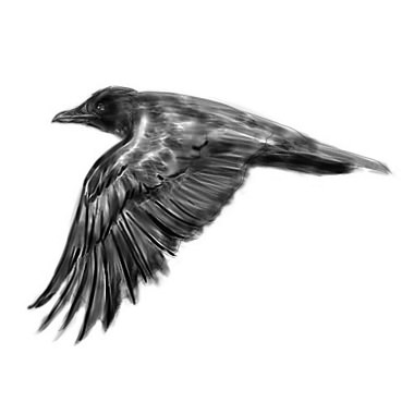 Once Again Flying Crow Tattoo Design