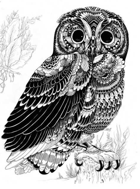 Once Again Owl Tattoo Design