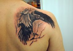 Open Wings Crow On Branch Tattoo