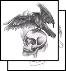 Open Wings Crow On Skull Tattoo Design