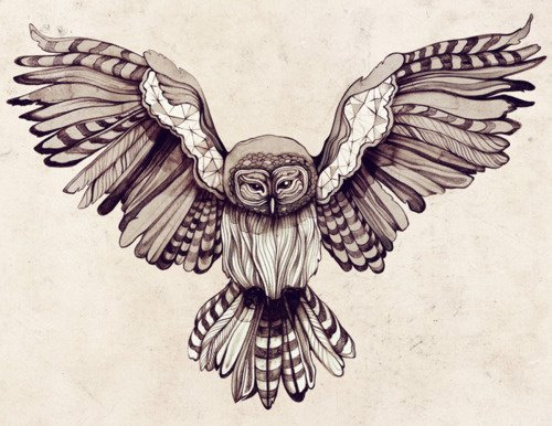 Open Wings Owl Tattoo Poster