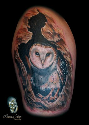 Original Barn Owl Tattoo On Half Sleeve