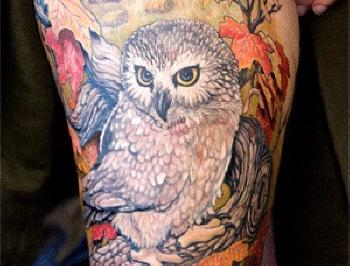 Original Barn Owl Tattoo