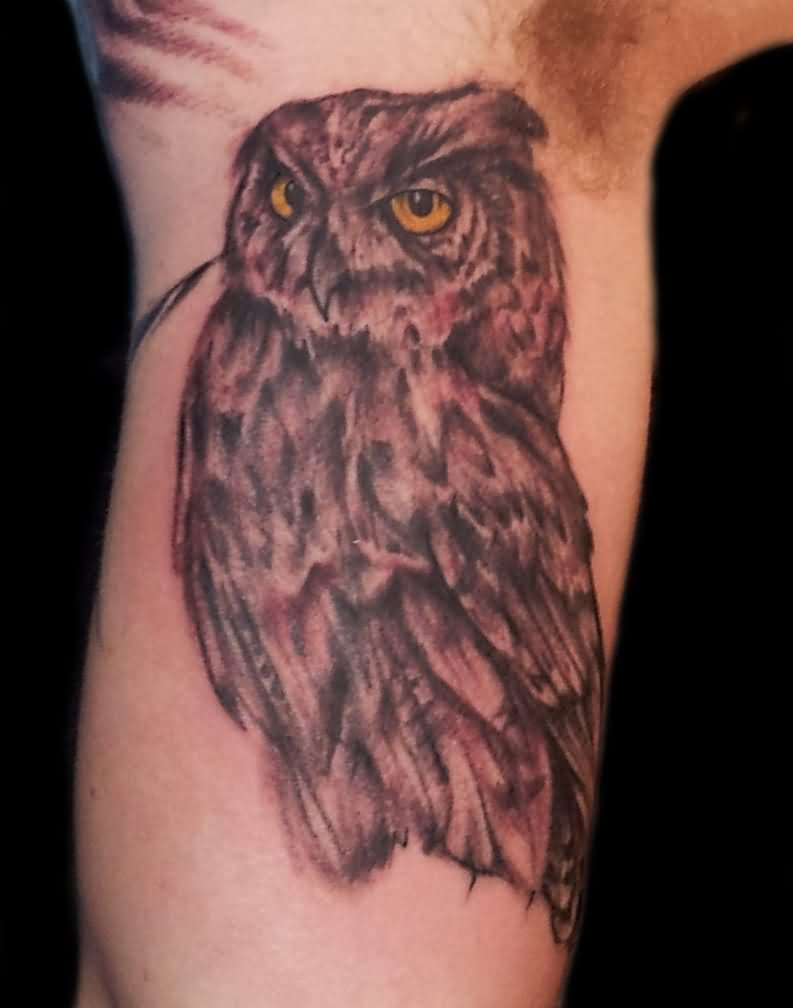 Original Owl Tattoo On Inner Arm