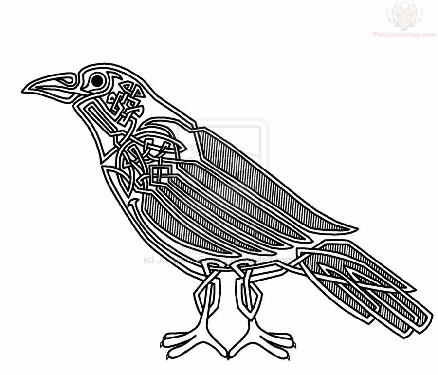 Outline Celtic Crow Tattoo Sample