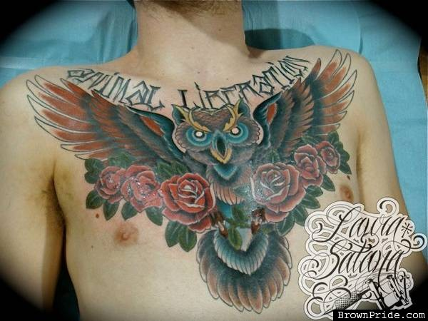 Owl And Red Roses Tattoos On Chest