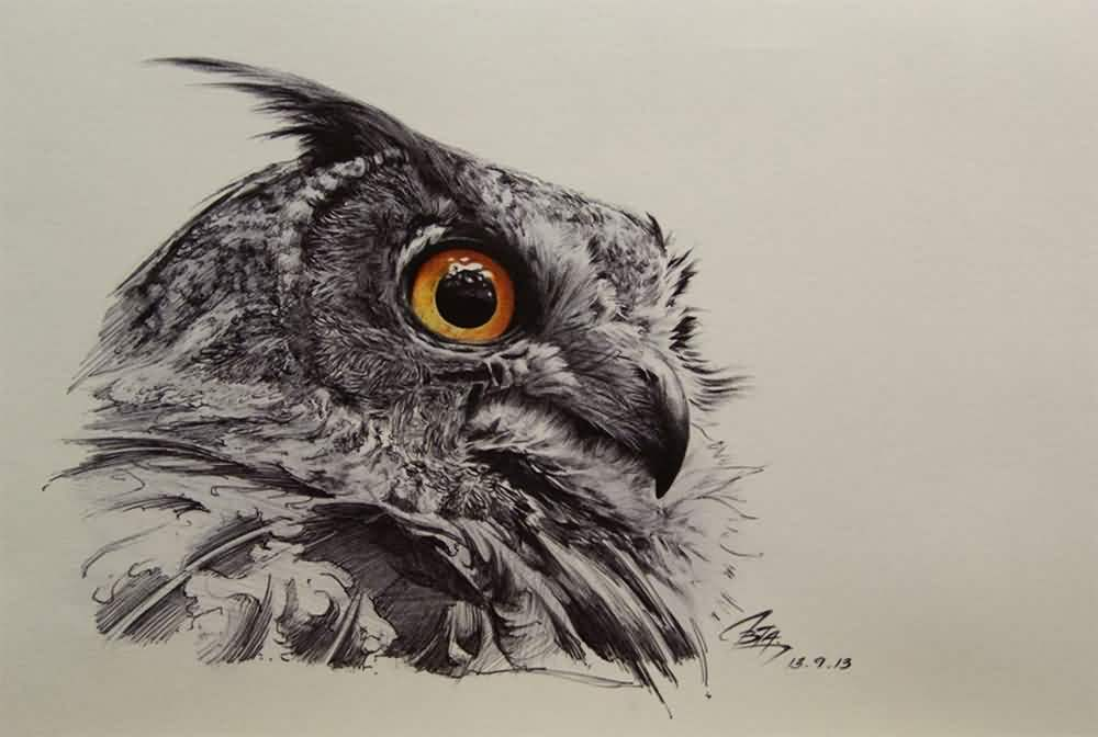 Owl Tattoos Designs And Ideas Page 68