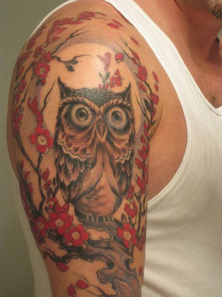 Owl On Blossom Tree Tattoo On Sleeve