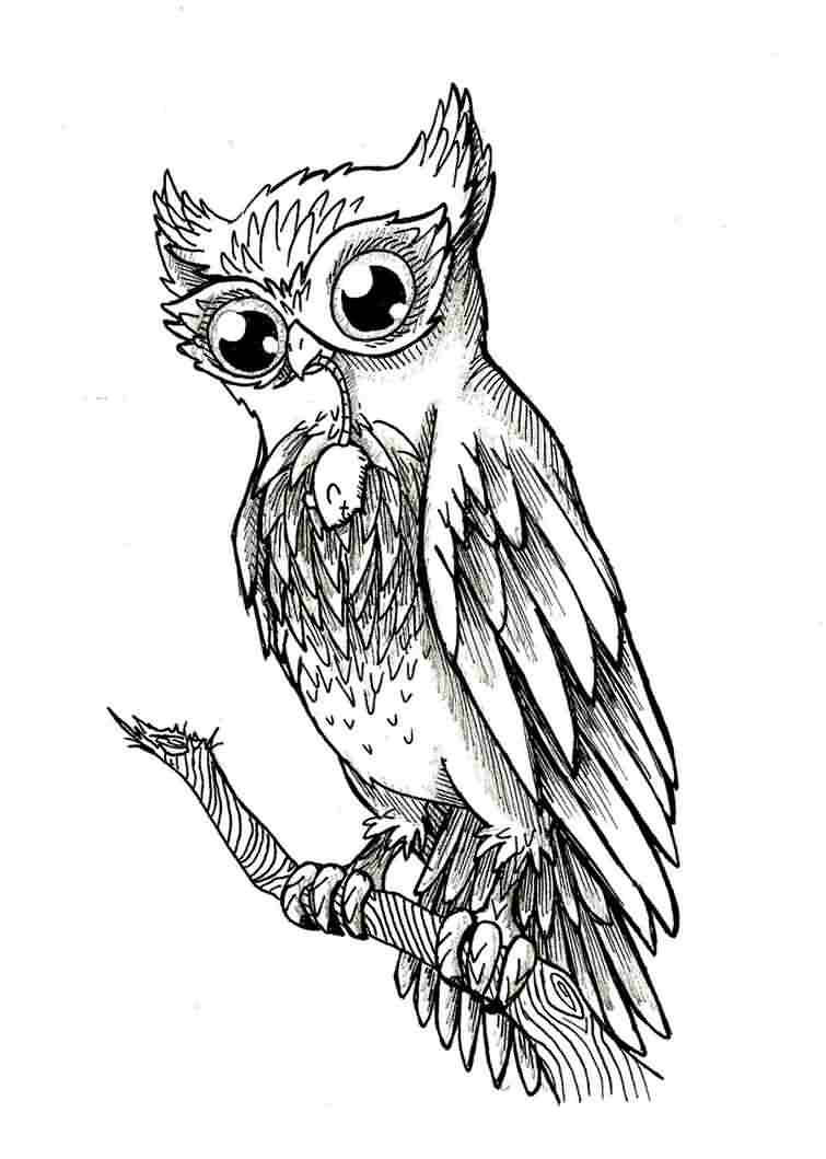 Owl On Branch Tattoo Design
