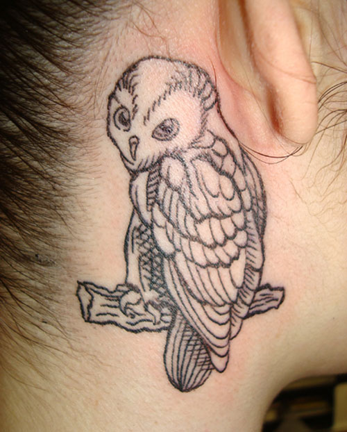 Owl On Branch Tattoo For Girls