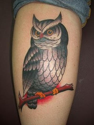 Owl On Branch Tattoo On Calf