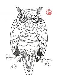Owl On Branch Tattoo Sample