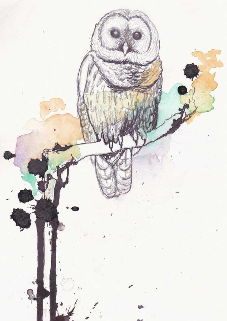 Owl On Branch Watercolor Tattoo Design