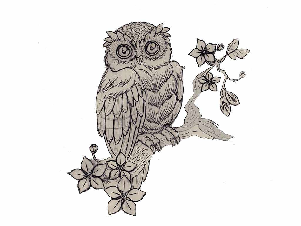 Owl On Flower Branch Tattoo Design