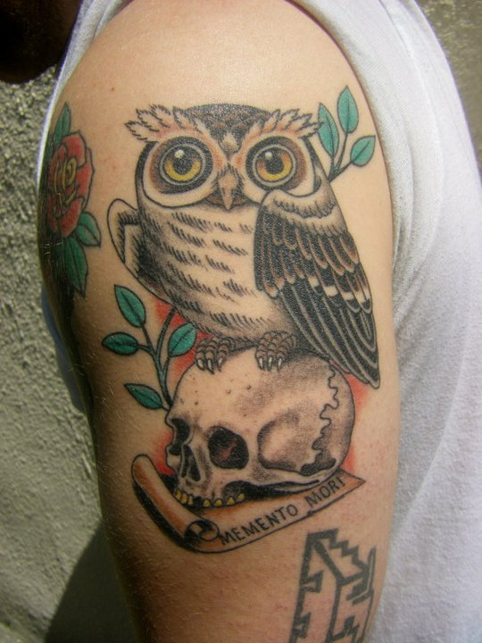 Owl On Skull Tattoo On Biceps