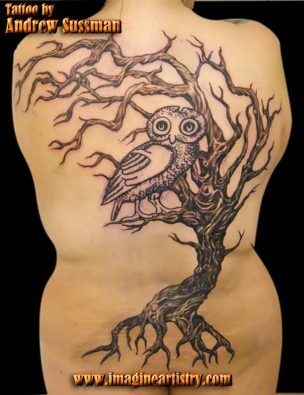 Owl On Tree Tattoo On Back