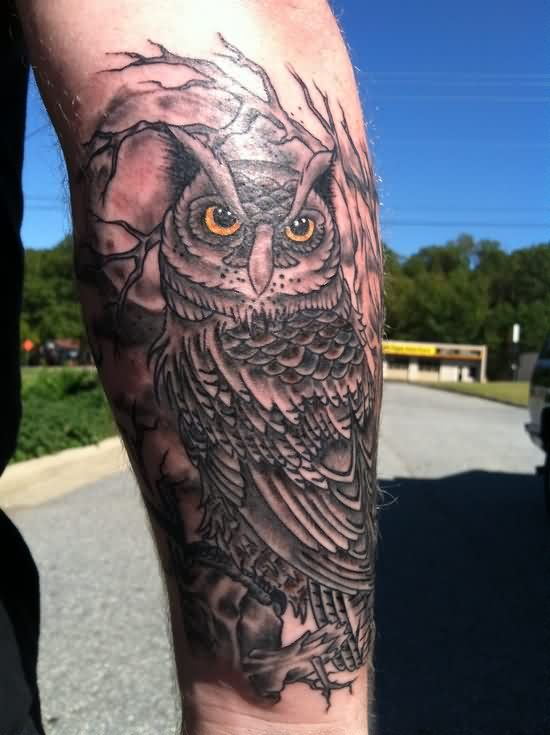 Owl On Tree Tattoo On Sleeve