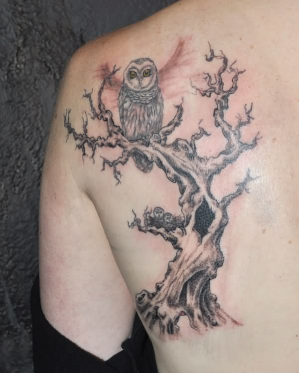 Owl On Tree Tattoo