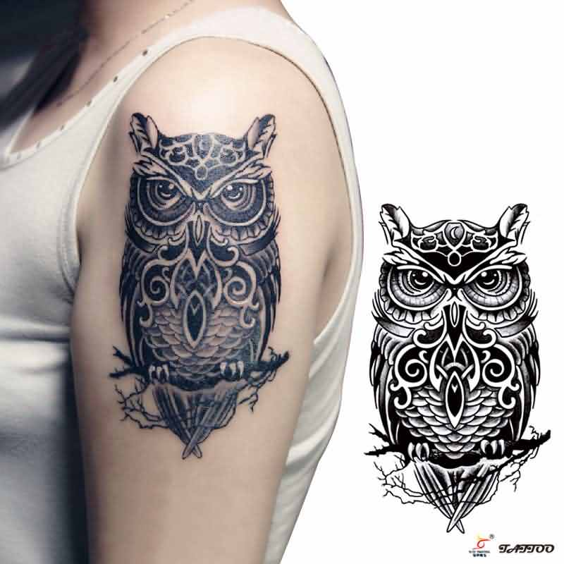 Owl Shoulder Tattoo For Girls