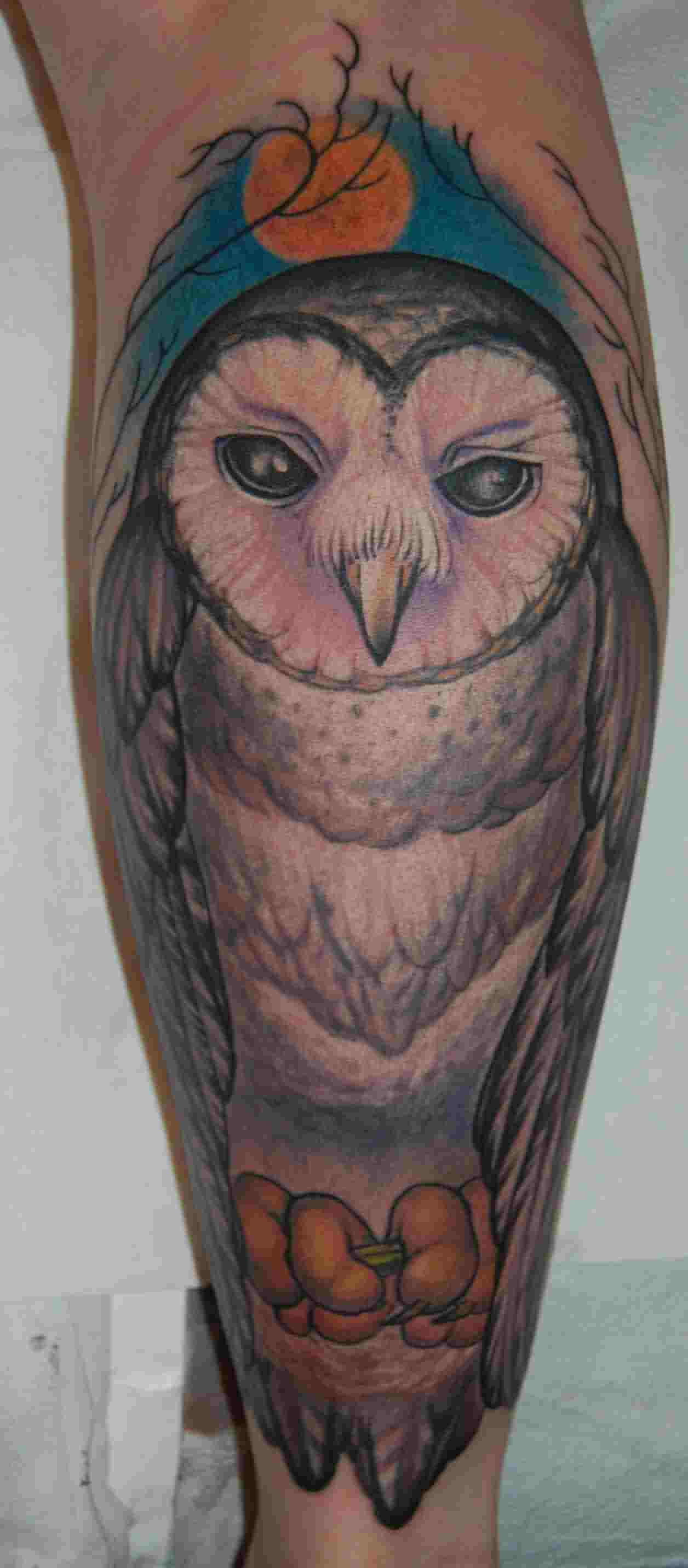 Owl Sitting On Branch Tattoo On Leg