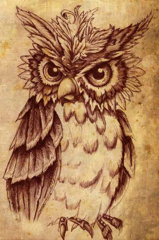 Owl Tattoo Poster