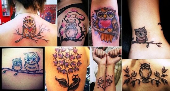 Owl Tattoos Images Set