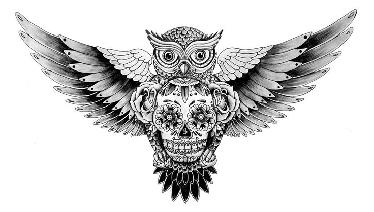 Owl With Roses And Sugar skull Tattoo Design