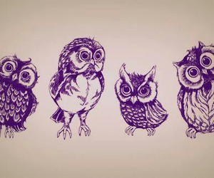 Owls Tattoo Designs