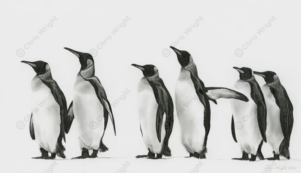 Penguin Parade Tattoo Designs