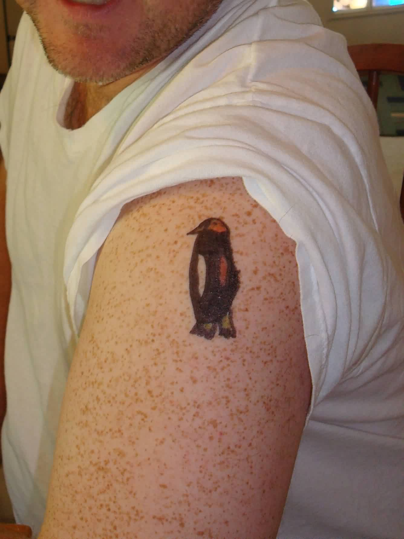 Penguin Tattoo On Biceps